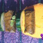 Hojas-de-parra-rellenas-receta-Repagas-destacado
